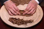 stock photo of tobacco leaf  - Selective focus on the process of making cigars from dried up leaves of tobacco plant - JPG