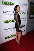 LOS ANGELES - NOV 21:  Morena Baccarin at the 6th Annual Hollywood Brazilian Film Festival Opening Night at the Montalban Theater on November 21, 2014 in Los Angeles, CA