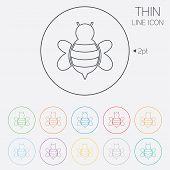 Bee sign icon. Honeybee or apis symbol.