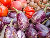 picture of aubergines  - Aubergines and tomatoes on display in a market - JPG