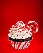 Christmas Candy Cane Cupcake
