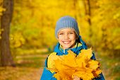 Portrait of small boy with yellow maple leaves