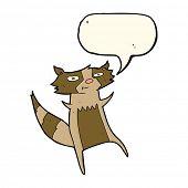 image of raccoon  - cartoon raccoon - JPG