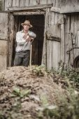 stock photo of excrement  - Farmer Shoveling the Horse Manure out of the Barn - JPG