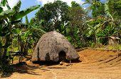 foto of hunter  - Head hunters minority village on the Timor island near Soe. Traditional grass hut. Nusa tenggara. ** Note: Visible grain at 100%, best at smaller sizes - JPG