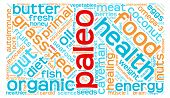 picture of fat-guts  - Paleo word cloud on a white background - JPG