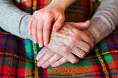 picture of granddaughter  - Unrecognizable grandmother and her granddaughter holding hands - JPG