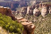 pic of semi-arid  - Sandstone formations along the canyon walls in Colorado National Monument as seen from Rim Rock Drive - JPG