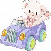 Teddy Bear  Driving A Toy Car