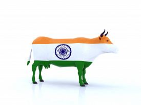 pic of indian flag  - a indian cow with flag 3d illustration - JPG