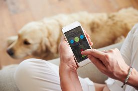 stock photo of track home  - Woman Looking At Health Monitoring App On Smartphone - JPG