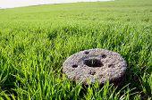 Old Millstone On Crop Spring Field