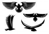 Heraldry Eagle Symbols And Tattoo