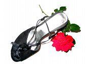Rose Ahn Shoe