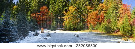 Autumn And Winter In The