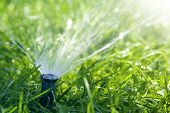 Lawn Water Sprinkler Spraying Water Over Lawn Green Fresh Grass In Garden Or Backyard On Hot Summer  poster