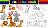 Coloring Book With A Wild Animals Cartoon poster