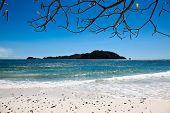 Beach Island Landscape
