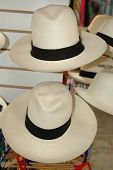 stock photo of panama hat  - panama hat 819 - JPG