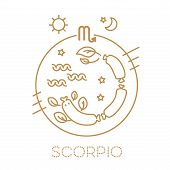 Scorpio Vector Signs Of The Zodiac In Circles Of Golden Color On A White Background. Astrological Fo poster
