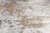 Worn Wooden Background. White Paint. Shabby. Wood. poster
