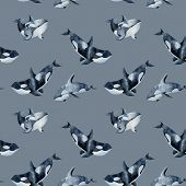 Seamless Pattern With Watercolor Killer Whales, Hand Painted On A Grey Background poster