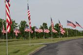 Flags at Saratoga National Cemetery
