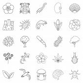 Flora Icons Set. Outline Set Of 25 Flora Icons For Web Isolated On White Background poster