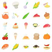 Vegetarian Icons Set. Cartoon Set Of 25 Vegetarian Icons For Web Isolated On White Background poster