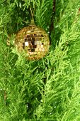 Golden Ball With Gingle And Firtree