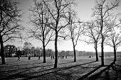 Museumpark, In Amsterdam
