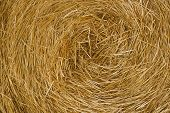 pic of haystacks  - Close up image of hay straw stack agriculture background - JPG