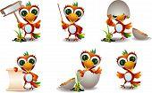 cute baby parrots cartoon set