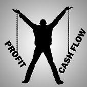 Profit Cash Flow