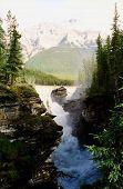 Athabasca Falls 1 - Canada