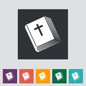 Bible Single Icon.