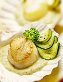 stock photo of scallop shell  - scallops served in a scallop shell with zucchini and parsley - JPG