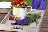 stock photo of picking tray  - Fresh strawberries and freshly cut lavender lying on a wooden tray - JPG