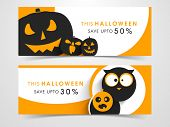 Website scary header or banner set with Halloween pumpkins and owl.