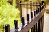 stock photo of wrought iron  - A wrought iron fence  - JPG