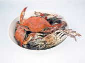 Cooked Blue Crabs In Bowl