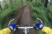 Closeup of a cropped bicyclist maneuvering down path through forest