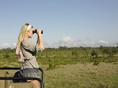 Side view of a young blond woman on safari standing in jeep looking through binoculars