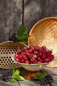 Wild Apples And Berries Aronia