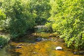 River Teign Dartmoor Devon National park tourist attraction