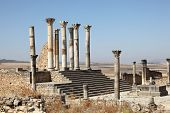 Temple In Volubilis, Morocco
