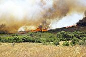 Huge bush fire at the west coast in Portugal