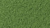Hoge resolutie textuur van gras