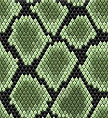 Green seamless snake skin pattern