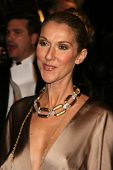 Celine Dion at the 2007 Vanity Fair Oscar Party. Mortons, West Hollywood, CA. 02-25-07